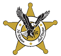 American Services and Protection, LLC